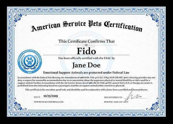 certification certificate esa service